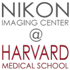 Nikon Imaging Center at Harvard Medical School Logo